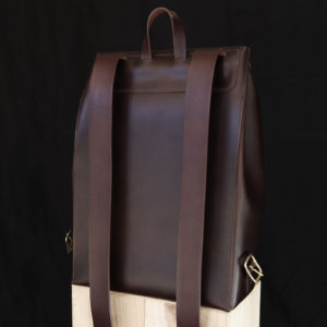 Amicus Backpack