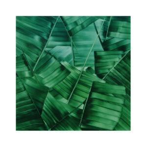 Large Green Palm  (2018)