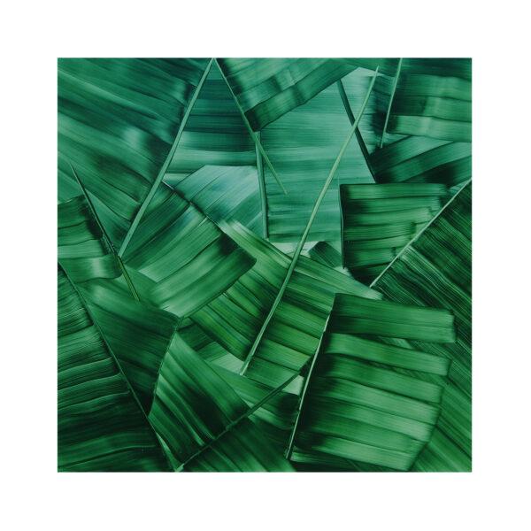 Large Green Palm  (2018)